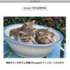 GGLuigiSearch - Finderで選択した画像やデスクトップの選択部分をGoogleの類似画像検
