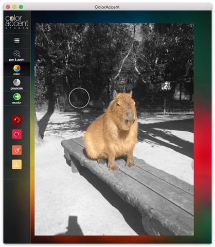 Color_Accent_Studio_Pro