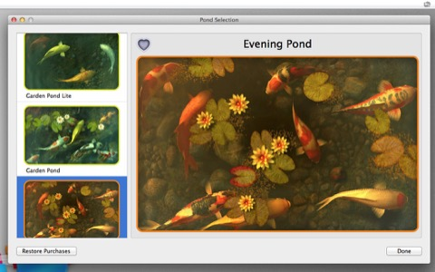 Koi_Pond_3D