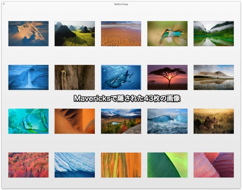 Mavericks_hide_photo1