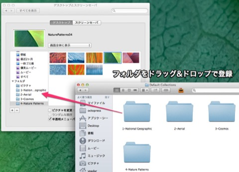Mavericks_hide_photo3