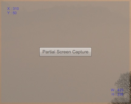 Partial_Screen_Capture