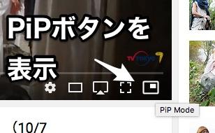 PiPTool
