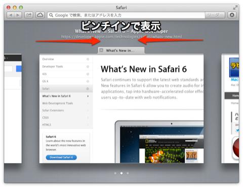 Safari6_3