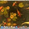 息をのむほど美しい池を鯉が泳ぐ映像をデスクトップに表示『Koi Pond 3D』