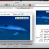 Finderのプレビュー欄でより多くの動画のサムネイルが表示されるようになる『QLVideo』